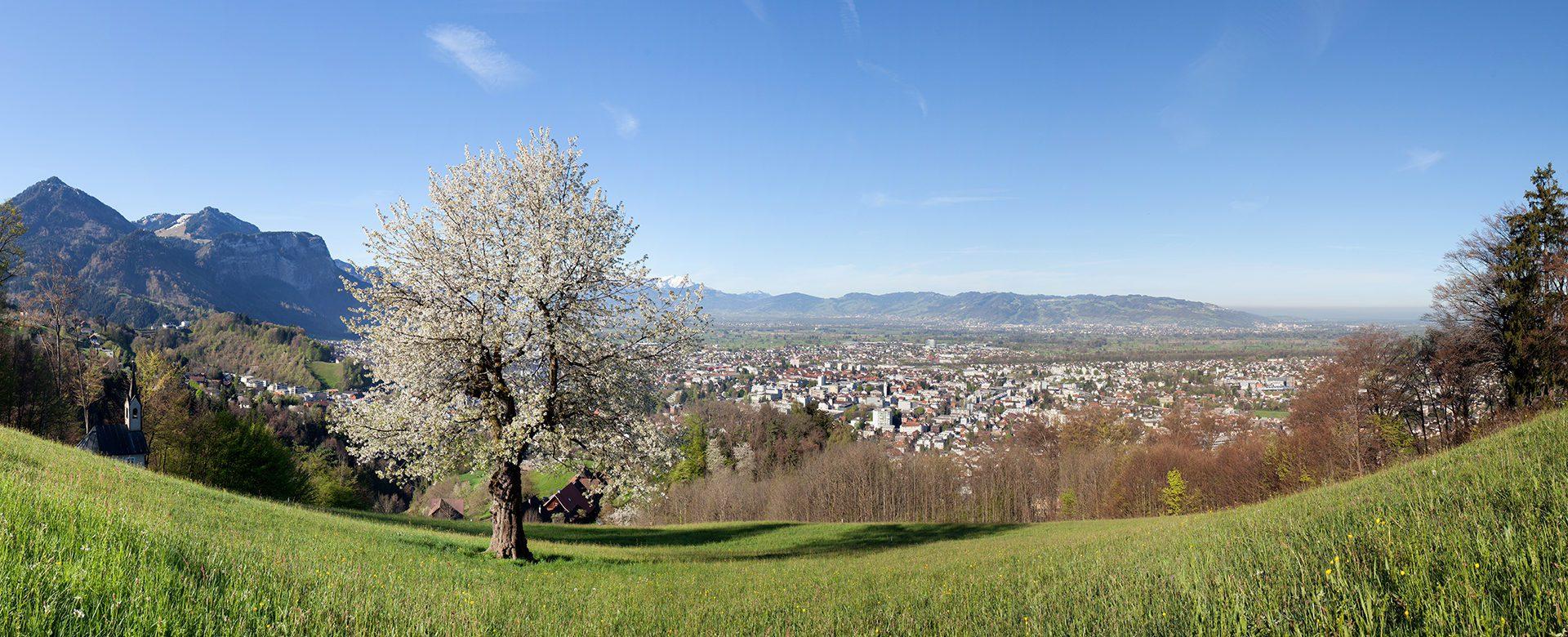 Frühling Umweltsanierung VLV